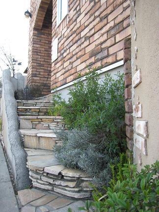 コバ石積みの階段