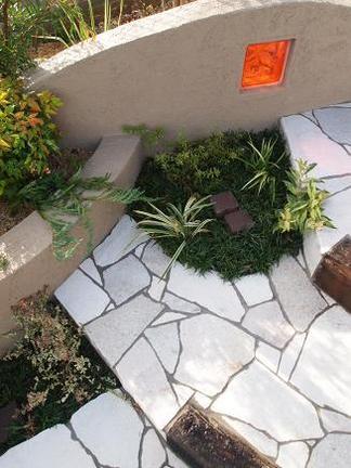階段脇の植物たち