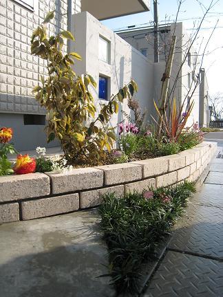 花壇の景色