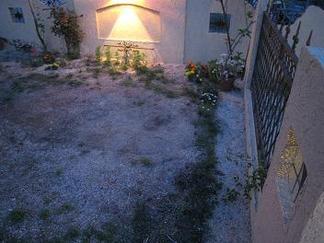 お庭の空間