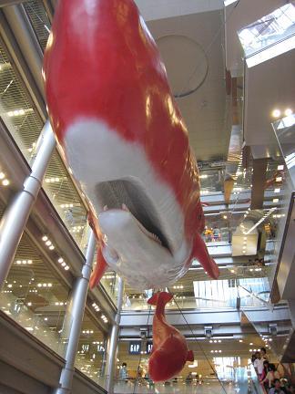 真っ赤なクジラ