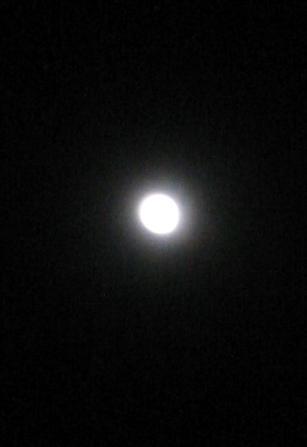 大晦日の月・・・