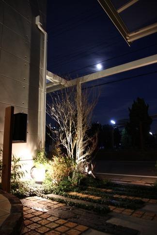素敵なお庭の夜景