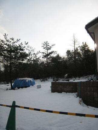 雪の被われたお庭
