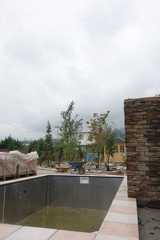 樹木植栽作業