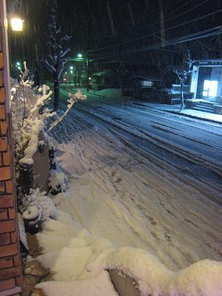 外は・・雪