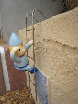 ハシゴを登ります!