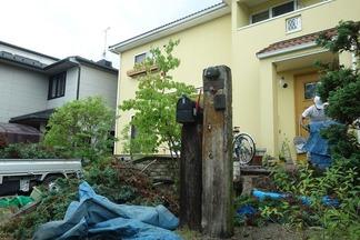 樹木剪定作業