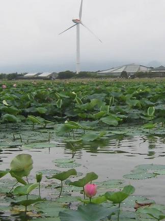 琵琶湖に浮かぶ大きな風車