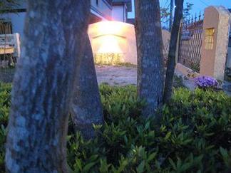 木々の間から眺める壁