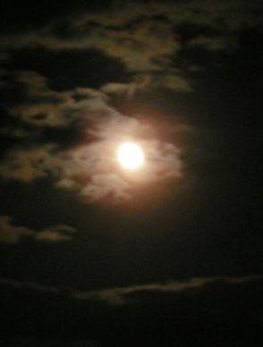 月への誘い・・