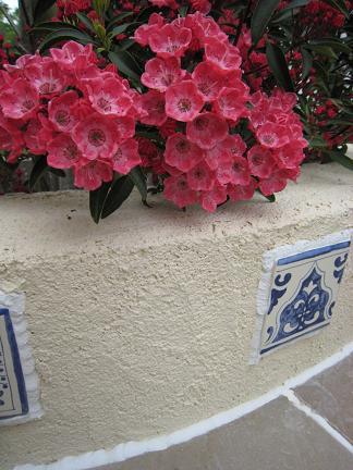 塗壁に花を添えて