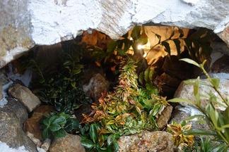 洞穴で灯る光り