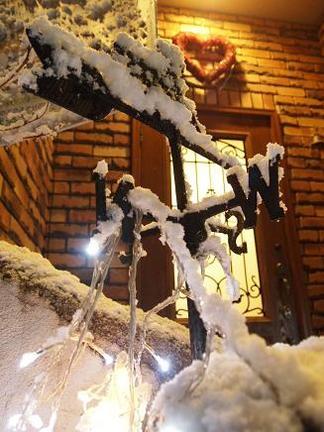 雪を被った風見馬