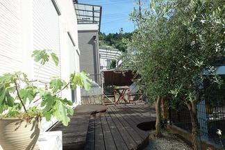 ウッドデッキのある庭