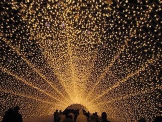 光りの回廊