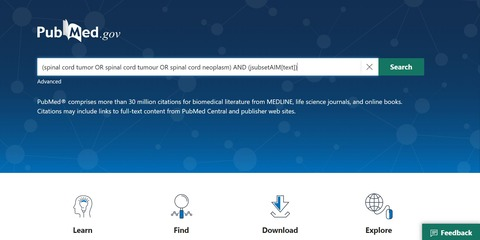 PubMed画面