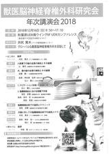 獣医脳神経脊椎外科