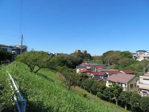 07kanigasawa