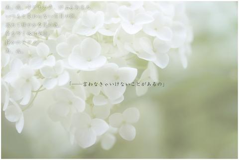 よひらのあめ-03_R