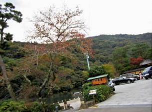 京都旅‐310