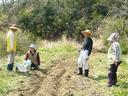4・30畝作り
