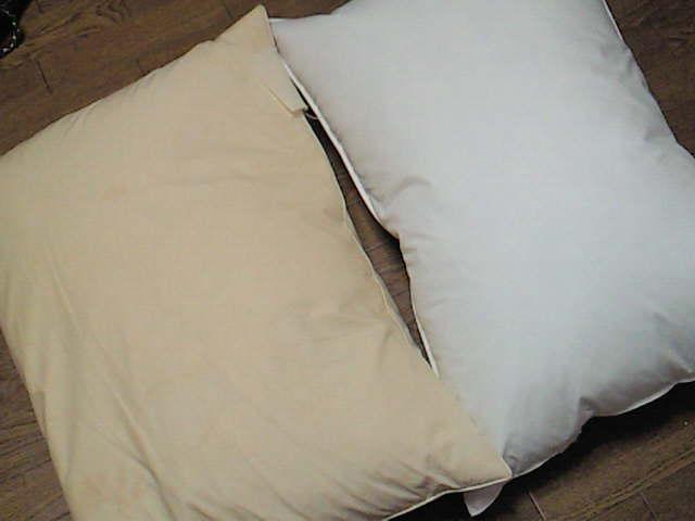 そういえば先週、無印で枕を買いました。安かった。980円の羽枕。 洗える枕が欲しかったけれど在庫なかったみたいなんで、こっちに決めたのです。