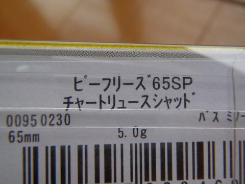 P4102987