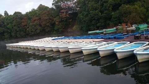弁慶堀ボート
