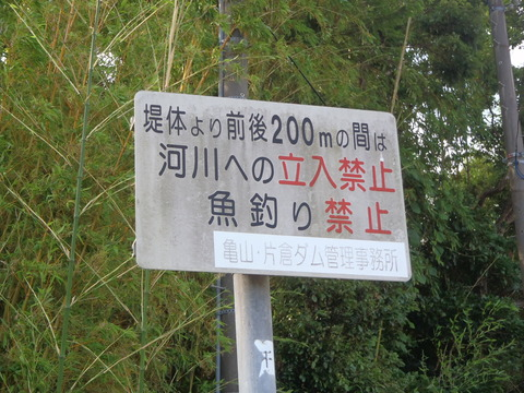 20160703kameyama (68)