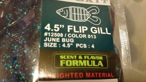 flipgill20150627 (2)