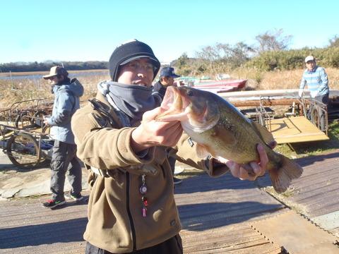 20161211ushiku (30)
