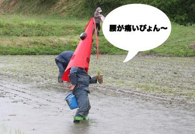 米楽園05