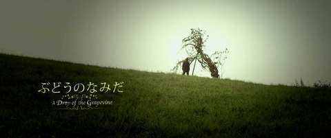 Budou no Namida