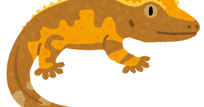 tokage_crested_gecko