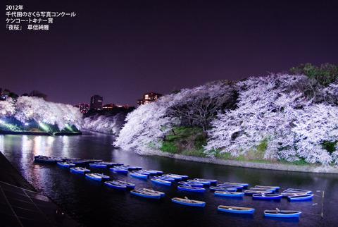 【風景/季節】都内の会社帰りに癒しの夜桜。ひとりで気軽に立ち寄れる、夜桜スポット