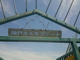 DSC_9460[1]