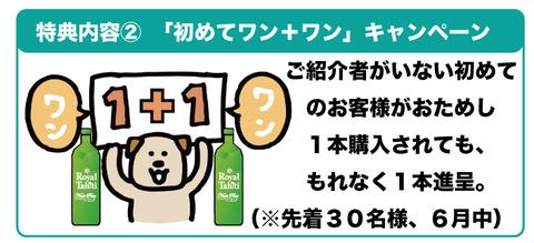 otameshi111setsumeiB