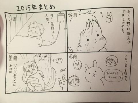 2015年まとめ