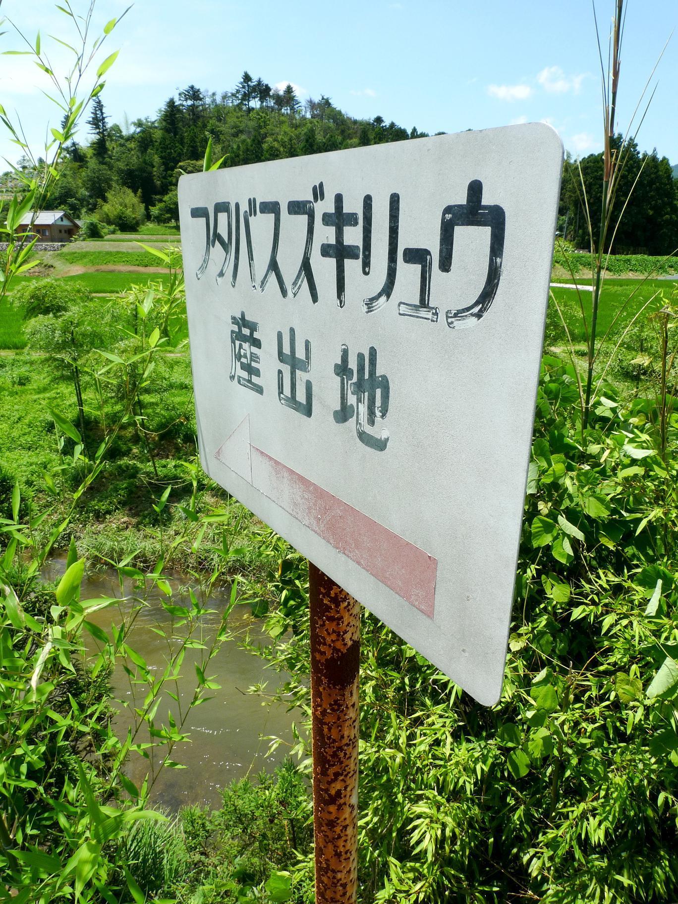 福島 県 いわき 市 大 久川