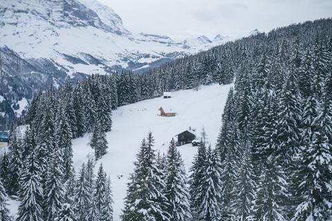 suisseDSCF0247_TP_V
