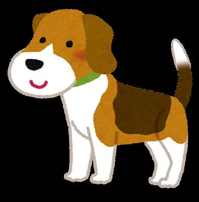 dog_beagle