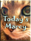 todaysmarcy