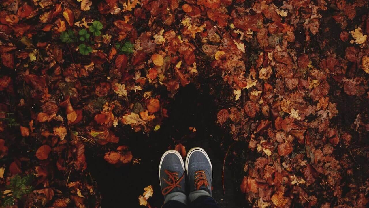 1017ec_shoes_autumn