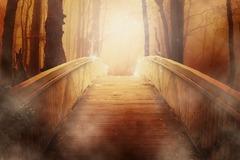 ようこそ光の世界へ