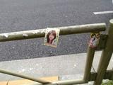 ガードレールに貼られたピンクチラシ
