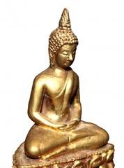 目の前に金の仏像が!