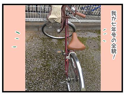 4coma_245_01