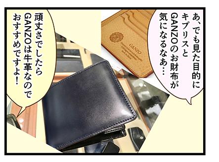 4coma_256_01