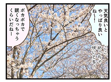 4coma_355_04